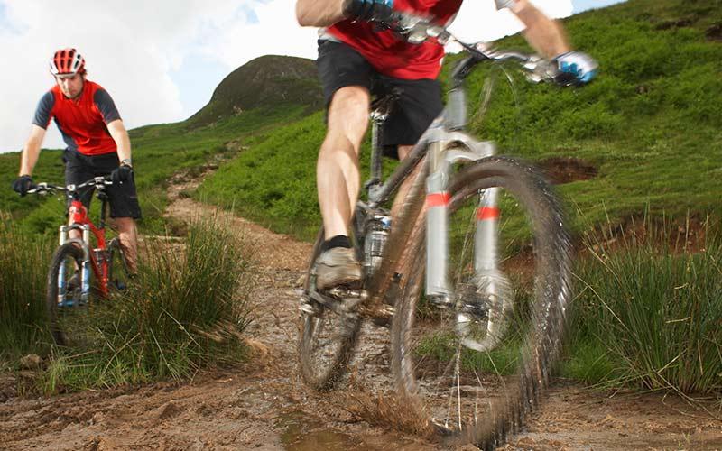 Mountain bikes can impact bush tracks through erosion