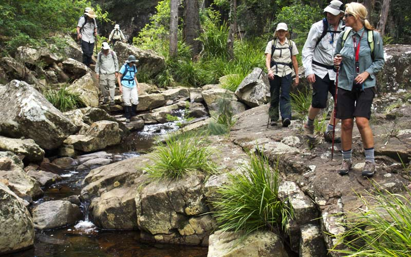 The Bushwalkers Code advocates bushwalkers have minimal impact on the evironment