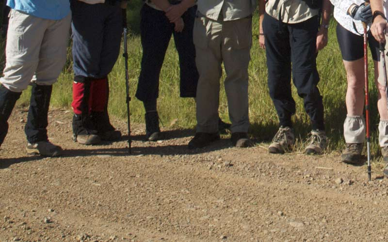 Bushwalkers wearing walking boots and gaiters
