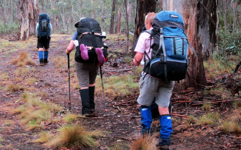 Bushwalkers with packs