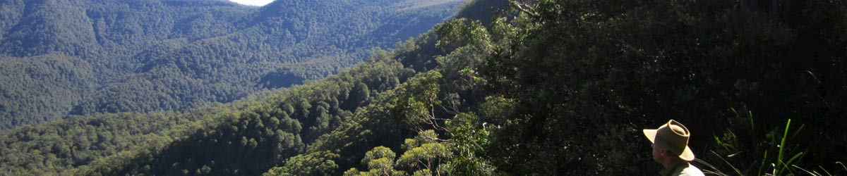 Bushwalking NSW promotes the conservation of National Park wilderness