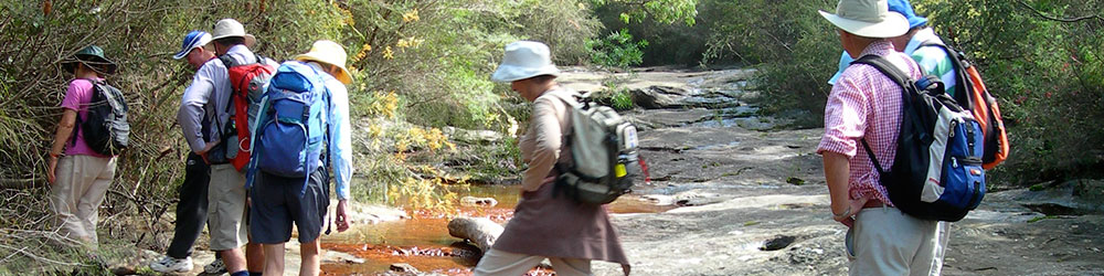 bushwalkers cross a creek