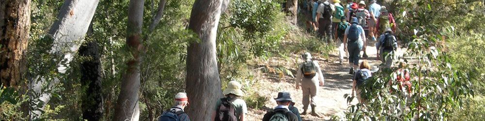 bushwalking with a club