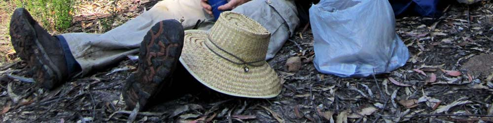 A bushwalker wearing bushwalking boots for safety and comfort in the bush