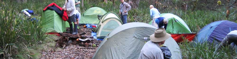 Bushwalkers camping in tents