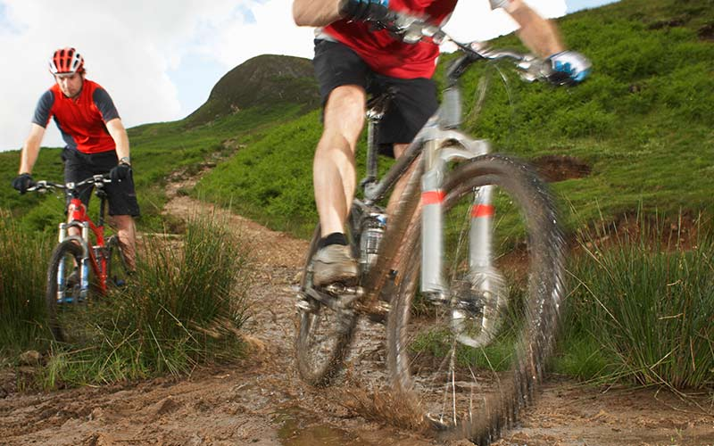 Mountain bikes can impact bush tracks through erosion